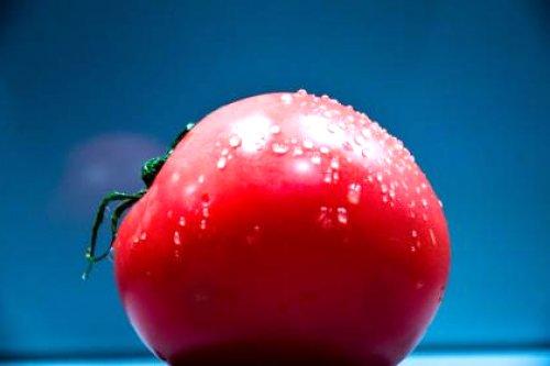 Gevulde Boursin Tomaten